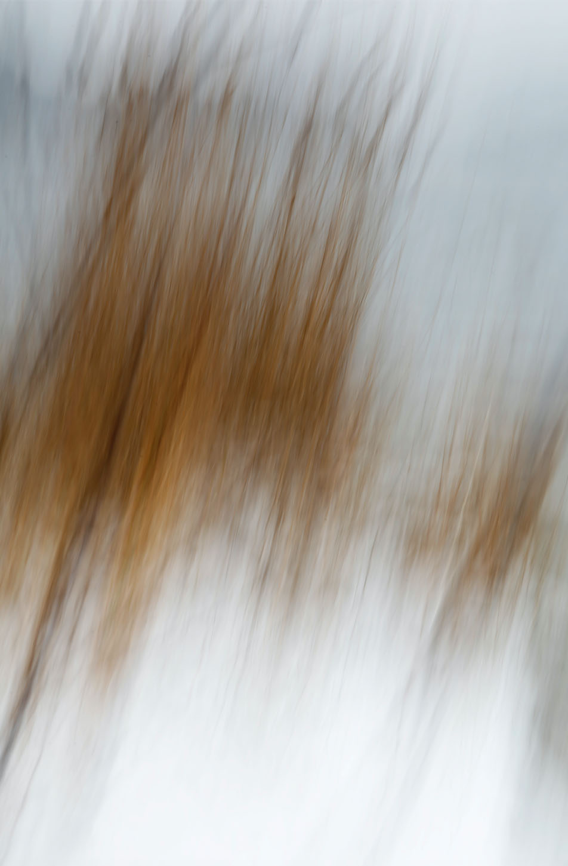bildschirmfoto-2016-04-26-um-17-14-22-kopie